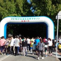 びわこ高島栗マラソン
