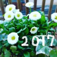 今年もよろしく~