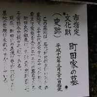 町田家墓地(石谷)