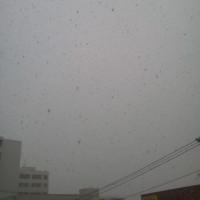 2016/12/2   午前8時半(撮影時)札幌の空模様