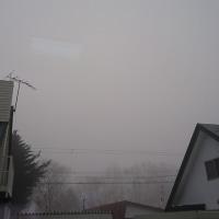 霧の朝(*_*)