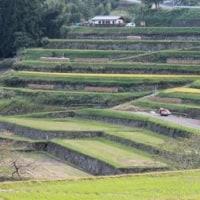 岐阜県恵那市中野方町の山里にある坂折棚田に、たぶん5年ぶりに訪れました