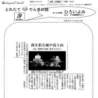 夜を彩る城や富士山・・・あま 電球35万個、来月3日から