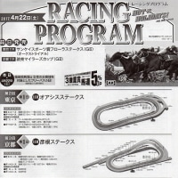 福島牝馬S、マイラーズC、フローラS 反省