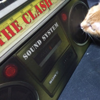 CLASH / Sound System