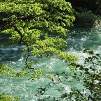 濁る世を澄めともよはずわがなりに 澄まして見する谷川の水 (良寛)