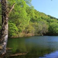 月の沢温泉「北月山荘」は新緑あふれる季節になりました