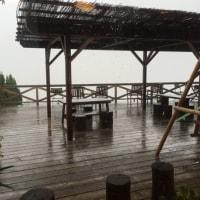 甲府は土砂降り。