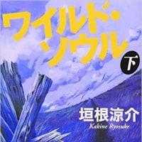 大興奮!大満足!「ワイルドソウル」by垣根涼介