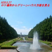 NHK朝ドラ(ひよっこ)の撮影シーンは時々散策するところだった!!!