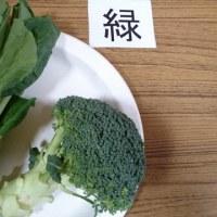 野菜ソムリエクラブ(野菜の色)