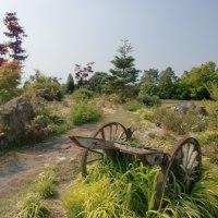 花の庭(2)
