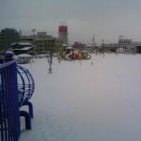 雪♪ 雪♪ 雪♪