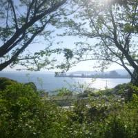 九十九島ウルトラジョグトリップ
