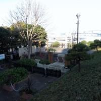 NHK趣味の園芸=『遊ガーデン』って・・・&横浜・港の見える丘のバラ♪