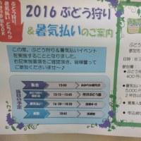 2016夏 第14回番号発表&コメント御礼!
