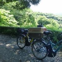 大楠山へサイクリング~♪