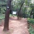 釜山タルマジ ウォーキング