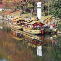 紅葉を見たくて大阪城公園へ 2 (2016.11.26)