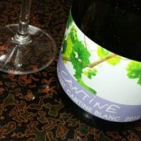 ヴィラデストのスタンダードな2015年の白ワインです。