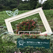 神戸布引ハーブ園(その2)
