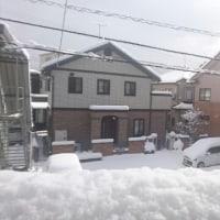 雪の日の過ごし方