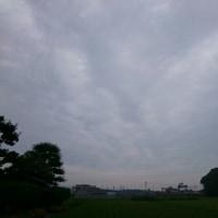 2017年6月24日 朝空