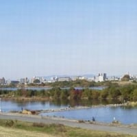 11月終わりの 公園~堤防~わんど