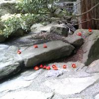 美しい『木彫りの椿』