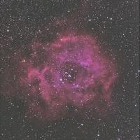 バラ星雲の再処理