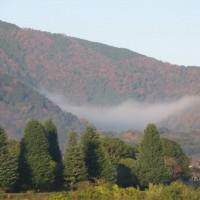 朝のウォーキング 嵐山