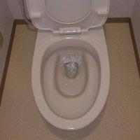 トイレ掃除もお任せください 逗子市