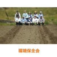 ボランティア活動の記録。環境保全会、ひまわりを育てています。