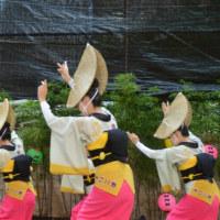 吹鼓連  NHK初出演