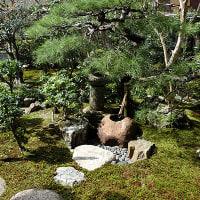 膳所焼美術館庭園