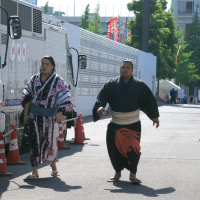 大相撲5月場所を観戦~①