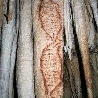 水のはたらき鍾乳洞  古代壁画