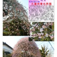 埼玉-579 久喜市青毛界隈