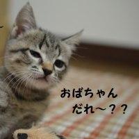 みいちゃんに会いに!!