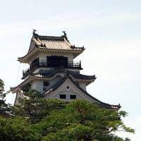 日本土佐錦魚保存協会 第29回 秋季大会