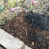 腐葉土と炭