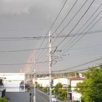 久しぶりに肉眼で虹を見ました