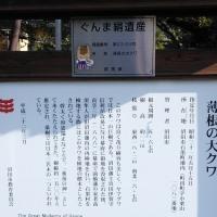 沼田の名所(大桑)