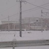 まとまった雪・・・。