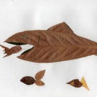 ねりま遊遊スクール「葉っぱでアート」のご案内