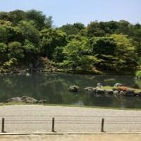 無理やり連れて行かれた「京都」旅日記。