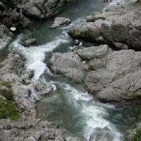 今日の鮎滝&猿橋_170626