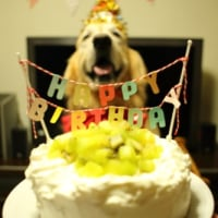Baddy's 8th Birthday.