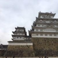 姫路城に行って来ました
