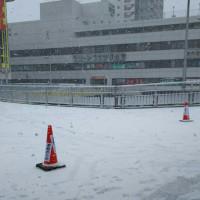 昨日は寒かった